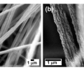 Highly Reactive Multilayer Assembled Coating of Metal Oxides on Organic and Inorganic Substrates