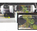 A whole watercress plant in a pressurized chamber for PBIN
