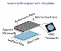 Improving throughput with microplates