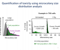 Quantification of toxicity using microcolony size distribution assay