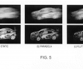 FIGS. 5 a-5 c are synthetic visualizations (imagery) of point spread function information loss between a blurred input and deblurring solution result.