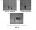 FIG. 10 are photographs showing magnetic separation of SWNTs in 2 wt % SC aqueous solution.