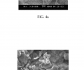 FIGS. 4 a and 4 b include scanning electron micrographs of the crystalline film of MOF-5 deposited at a constant potential of −1.6V vs. Ag/Ag (crypt), as described in FIGS. 3 a and 3 b, according to an illustrative embodiment of the invention.