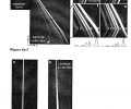 FIG. 6 demonstrates entropic trapping of a λ DNA-Hind III digest. Fluorescent photographs show separation of the λ DNA-Hind III digest under different electric filed conditions. For a, b, f, Ex=185 V/cm, Ey=100 V/cm; for c, Ex=50 V/cm, Ey=100 V/cm; for d, Ex=145 V/cm, Ey=100 V/cm; for e, Ey=170 V/cm, Ey=100 V/cm. Band assignment: (1) 2.322-kbp; (2) 4.361-kbp; (3) 6.557-kbp; (4) 9.416-kbp; (5) 23.130-kbp.