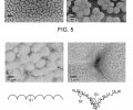 FIG. 5 are SEM images of silica particles self-assembled on a flat silicon substrate. FIG. 6 are SEM images of porous copper having pores between copper particles, nanoscale cavities and nanowires on copper particles.