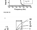 FIG. 2E is a graph of the overall impedance of the scaffold biomaterial before and after modification with NWs. Thin layers of Alg-NW or pure alginate films were pressed between two ITO glass slides. These slides served as electrodes and were used to apply an AC bias with frequency swept between 1 MHz and 10 Hz. At frequencies near DC, the impedance of the composite membrane was much lower than that of the pure film.  FIG. 3 is a graph of calcium transient propagation within the engineered tissues.